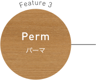 Feature 3 Perm パーマ